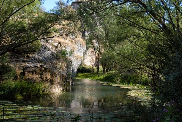"""El proyecto Life+ """"MedWetRivers """"estudia grupos de fauna indicadores de la calidad de los ecosistemas fluviales y humedales"""
