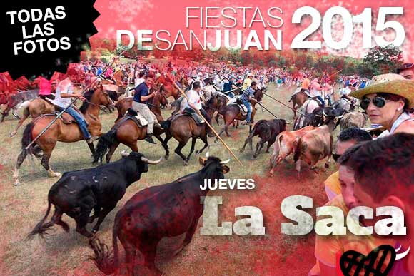 Nueve toros  llegan a Soria