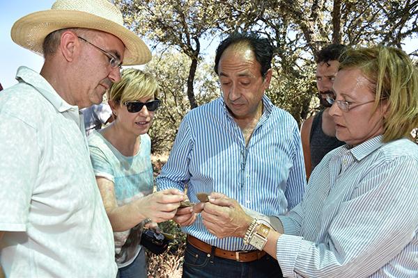 Velilla de Medinaceli estudia la evolución desde el Bronce Medio hasta el Bronce Final