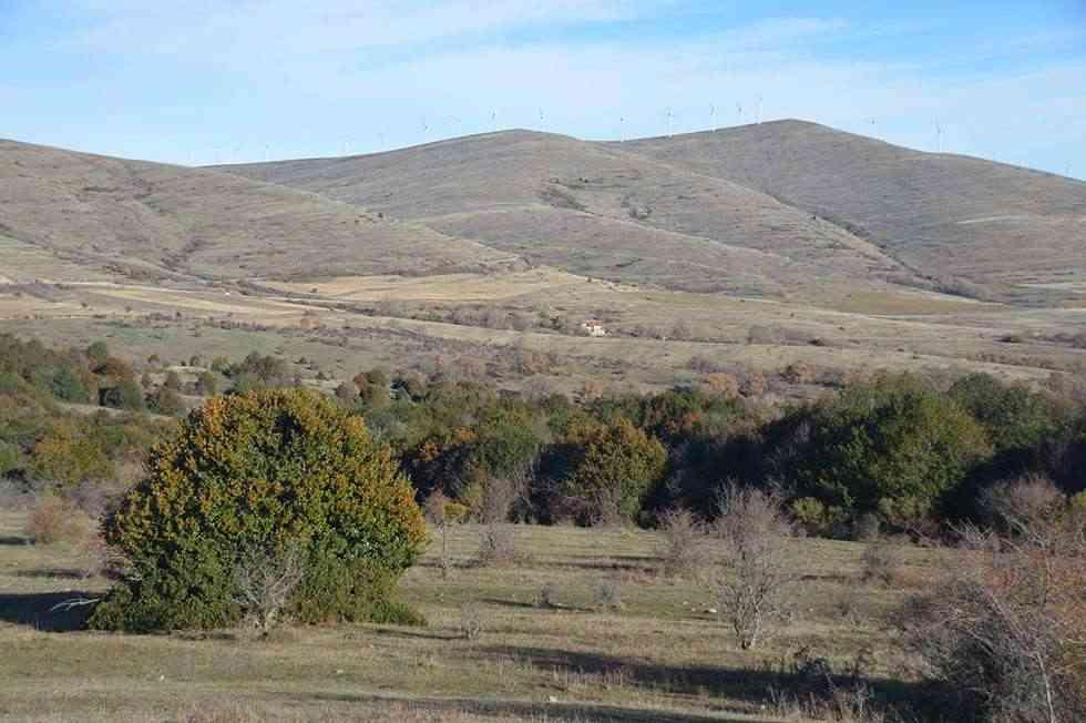 Expropiaciones de terrenos para la presa del río Mayor