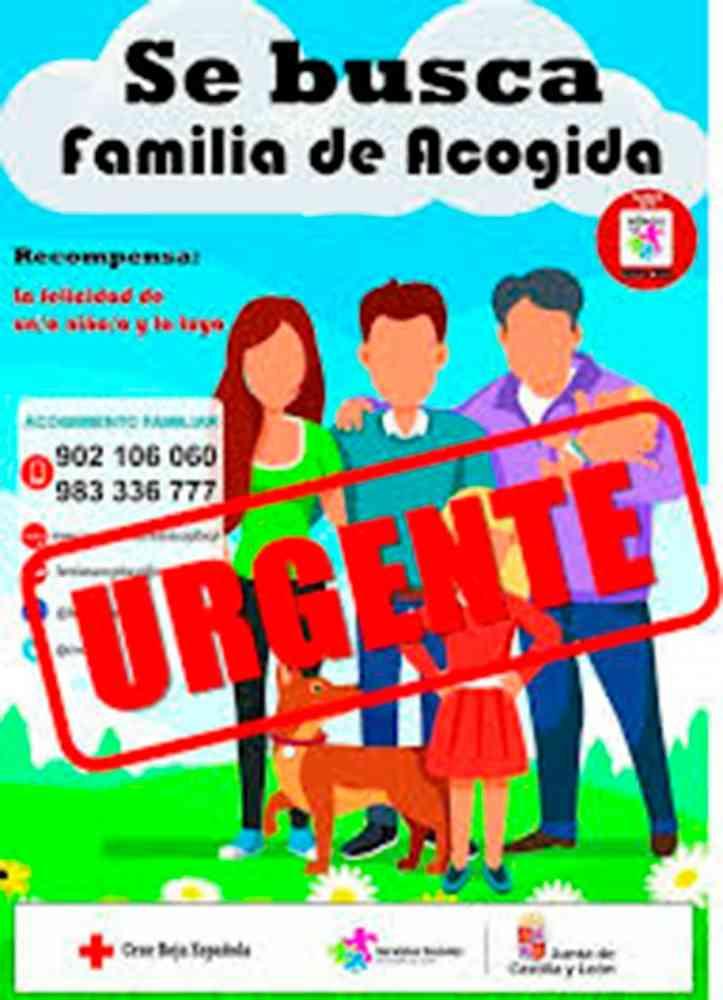"""Curso de formación del programa """"Familias de acogida"""""""