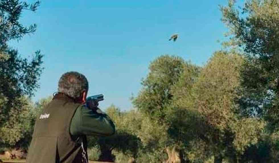 El Burgo licita aprovechamiento cinegético en Valdenarros