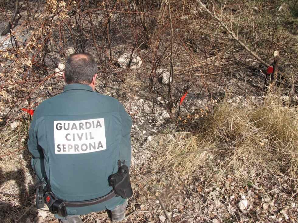 Investigan un hombre en la ribera por presunto incendio forestal
