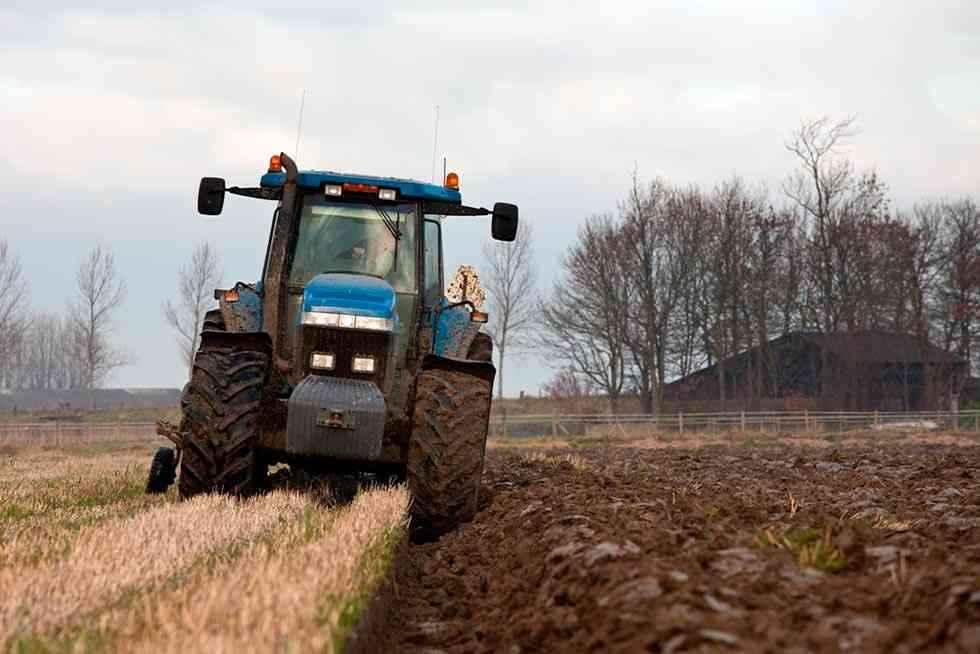 La renta agraria alcanza su mejor registro en última década