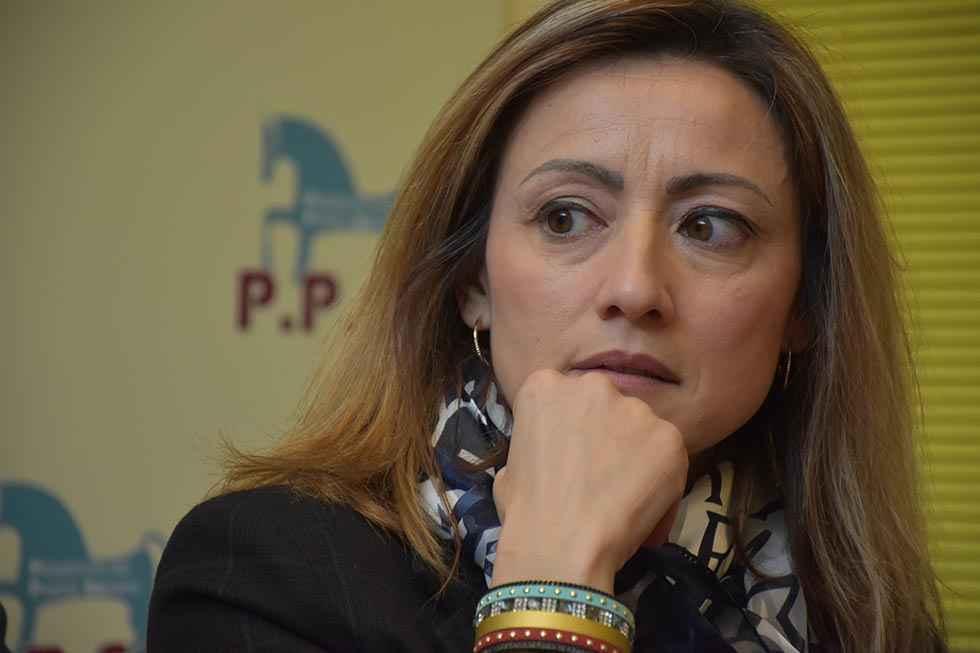 Fernández Araque, alcaldable por la PPSo en Soria