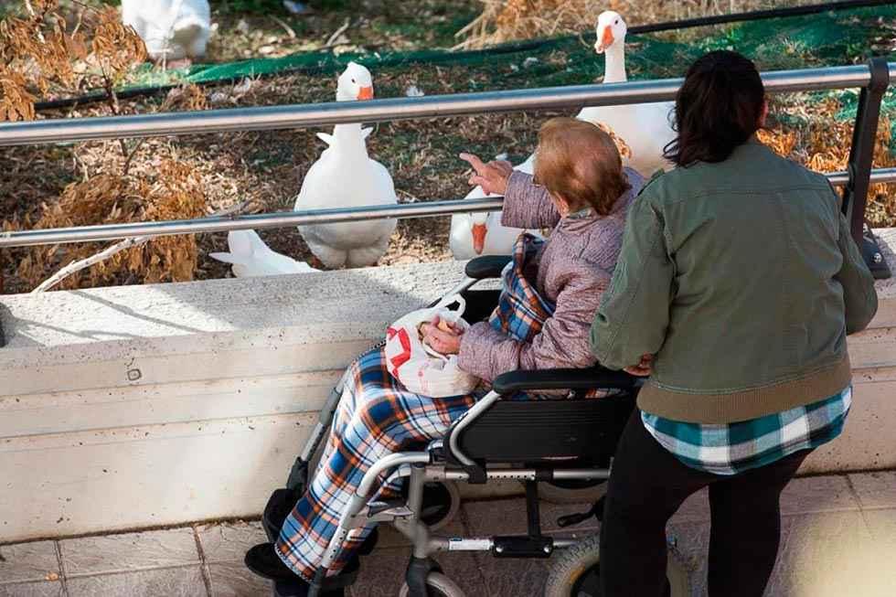 Un estudio de CC.OO. resalta implantación de Atención a la Dependencia