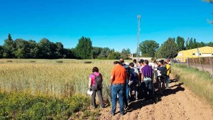 Las Jornadas de Agricultura Ecológica llegan a Almazán