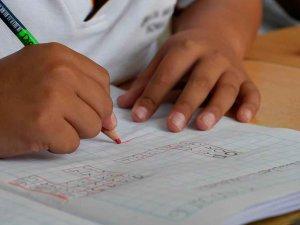 El 97 por ciento de familias obtiene el centro elegido como primera opción