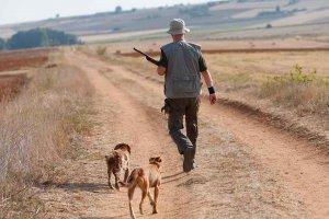 A exposición pública el plan de caza que emana de la nueva ley