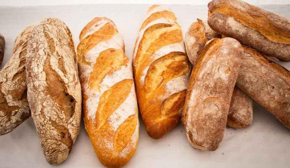El Itacyl profundiza en nueva Ley del Pan