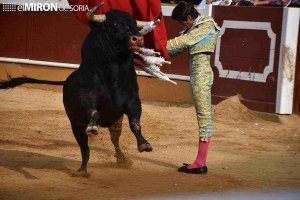 "El XXXIX Trofeo Taurino ""Segundo Ayllón"", desierto"