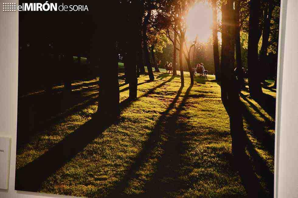 """""""La Dehesa, sonata emocional"""", hasta el 30 de septiembre"""