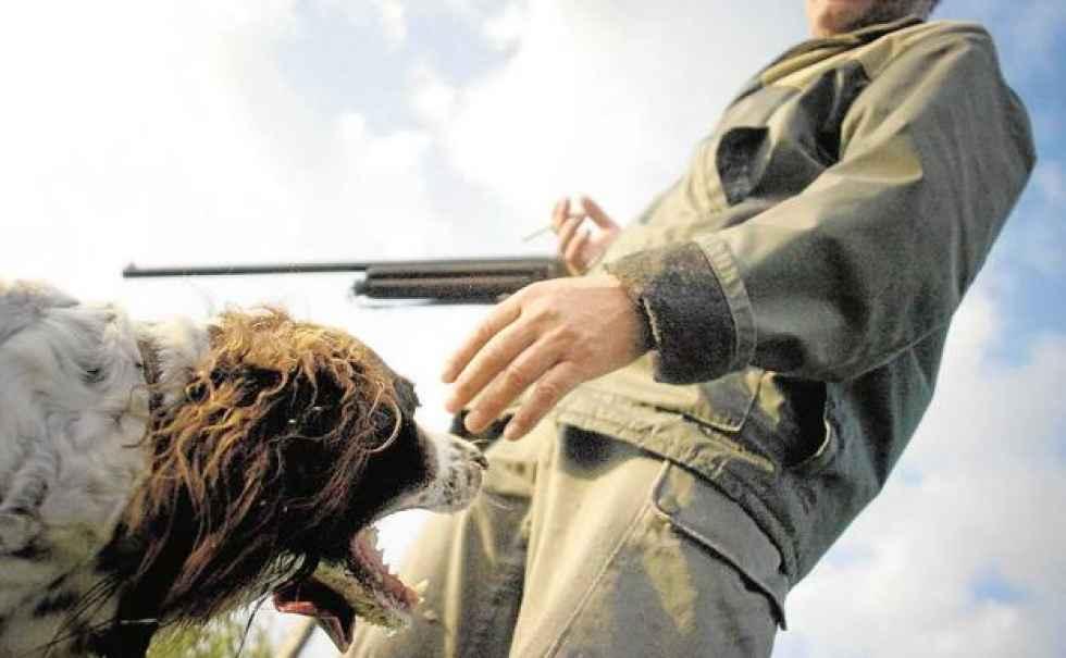 La Junta confirma el inicio de la media veda de caza