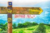 Los peregrinos eligen nombre para el guía del Camino de Santiago accesible