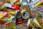 Los custodios ambientales llaman a celebrar el Día Mundial de la Limpieza