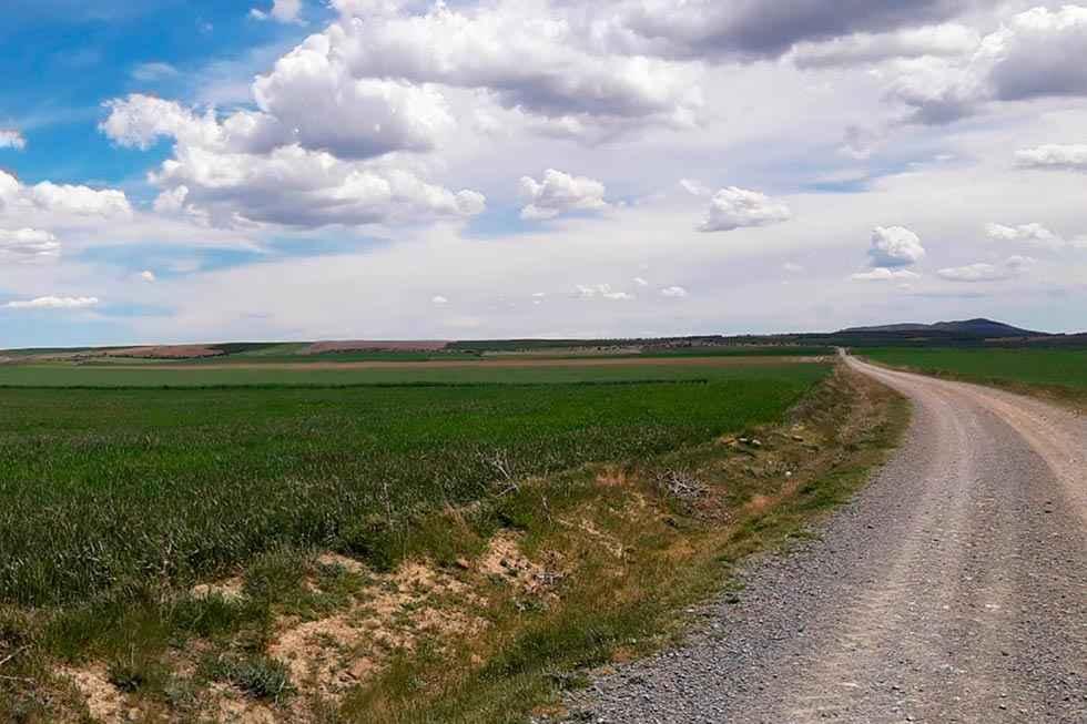 La Junta aprueba el informe ambiental para la vaquería de Noviercas