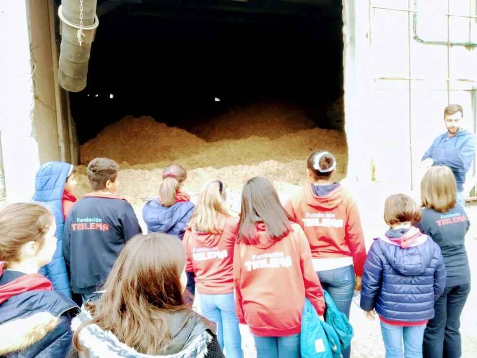 Alumnos de Trilema conocen la central de biomasa de Rebi