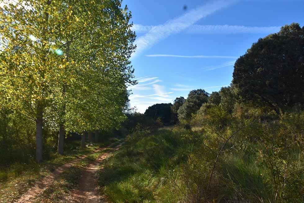 Una senda para disfrutar junto al Duero