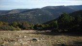 Desmantelado un campamento de recolectores ilegales en Villar del Río