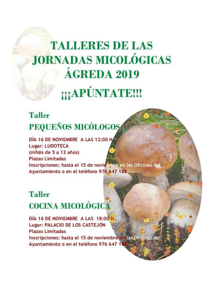 Jornadas micológicas en Ágreda