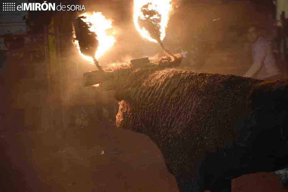 El toro jubilo ilumina la noche de Medinaceli