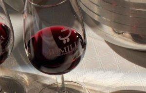 Cata de vinos de la Denominación de Jumilla en el Casino
