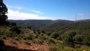 La Junta aprueba el impacto ambiental de trufera en Layna