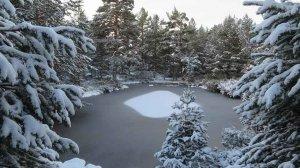 Primer temporal de nieve en Urbión - fotos
