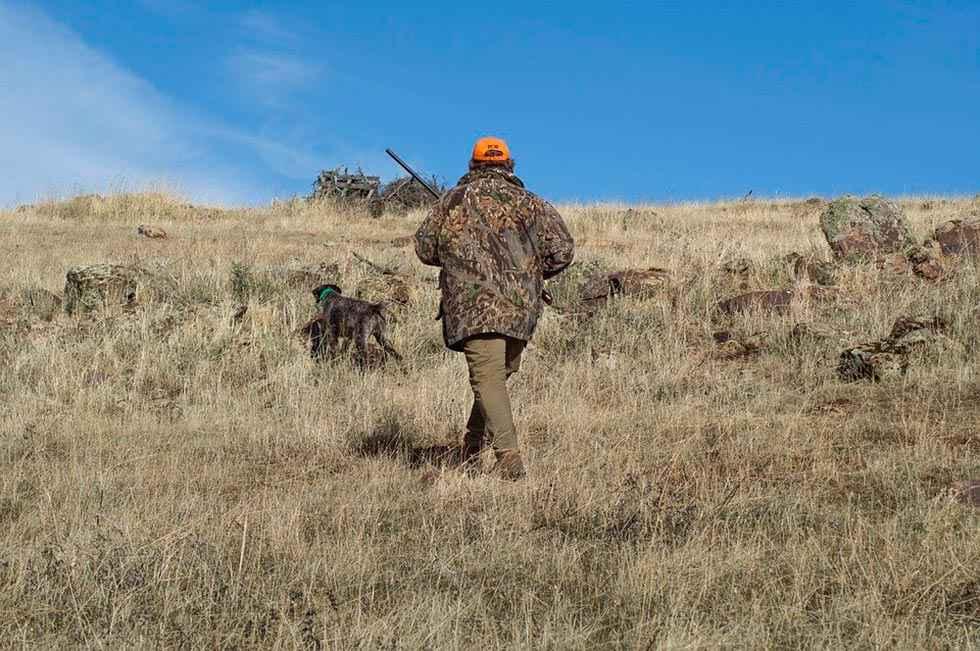 Comienza la tramitación de la Ley de Gestión Sostenible de caza