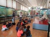 Talleres de Navidad en el Museo Numantino