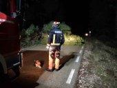 El temporal Fabien provoca 25 incidencias en la provincia