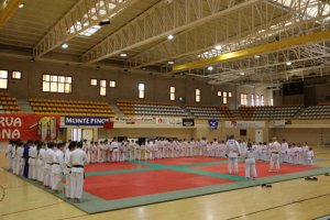 Un centenar de judokas en el tradicional festival de Navidad