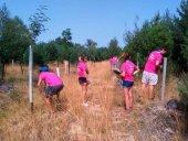 Los campos de voluntariado generan un impacto económico de 300.000 euros