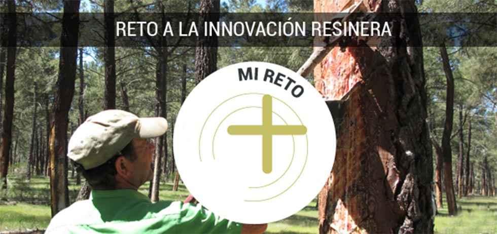 """Cesefor impulsa una """"tormenta"""" de ideas para la innovación resinera"""