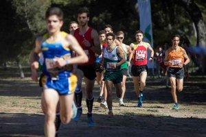 Soria, sede del Campeonato de España universitario de cross