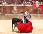 """Entrega de premios """"a la torería"""" en Arcos de Jalón"""