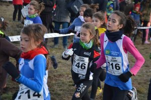 Cross Popular de Los Llamosos 2020 - fotos