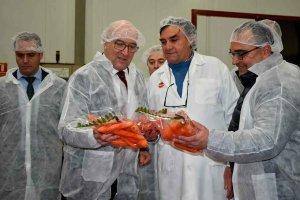 Nueva convocatoria de ayudas para la industria agroalimentaria
