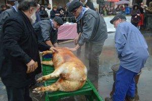 Virrey Palafox: el ritual de la matanza - fotos