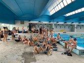 Competición y exhibición de natación con aletas