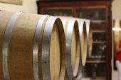 Lucas confirma la implantación de vitivinicultura en San Esteban de Gormaz