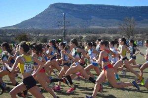 Campeonato de España de cross por clubes (I) - fotos