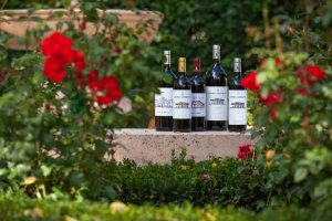 Los vinos de Castilla y León conquistan Verema 2019