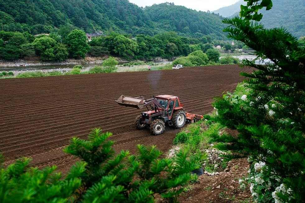 Lo que se puede hacer en las explotaciones agrícolas y ganaderas