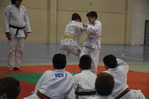 Campeonato Regional de Edad de Judo en Los Pajaritos
