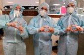 Protocolo para garantizar el suministro de material sanitario