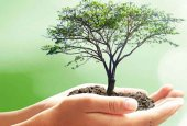 Se retrasa la plantación del bosque Desafío Urbión