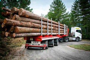 Cesefor resalta apoyo logístico de sector forestal contra Covid 19