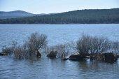 La Cuerda del Pozo mantiene su nivel de agua embalsada