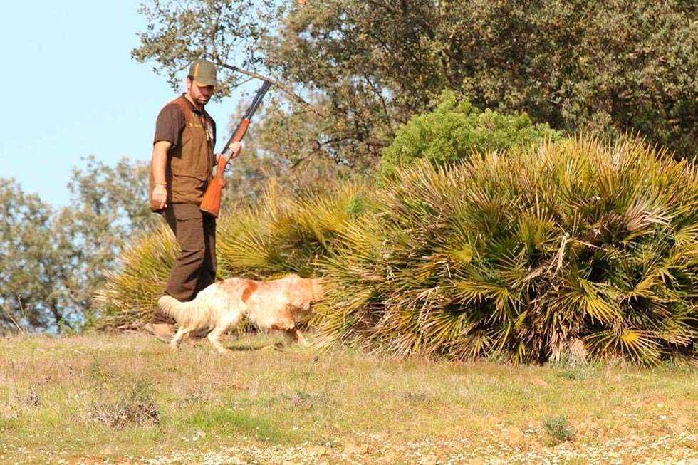 ANATUR propone medidas para la caza en estado de alerta